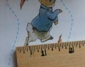 5 Sheets Beatrix Potter Peter Rabbit Hopping Border Big Stickers 2001 Colorbok, Bunny and Carrots