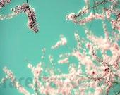 Pastel Wall Art, Blue, Pink, Flower Photography, Girl Nursery Decor, Spring, Blossom Print, Bedroom Wall Art