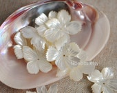 10pcs White Mother of Pearl Shell Flowers 25-45mm Unique Shape (V1232)