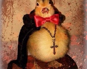 Count Duckula: Taxidermy Duckling, Real Duck on a Hand-stained Wood Base