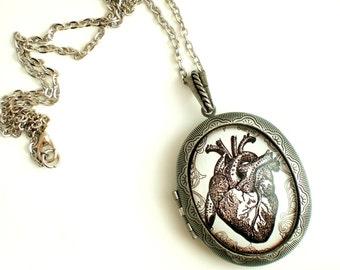 Anatomical Heart Locket Anatomy Necklace Heart Necklace Anatomy Jewellery Gothic Necklace Medical Student Gift Gothic Valentine Love Gift