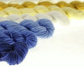 Dr. Who Mini Skein Set DK or Fingering Choose Your Yarn Base -  Starry Night