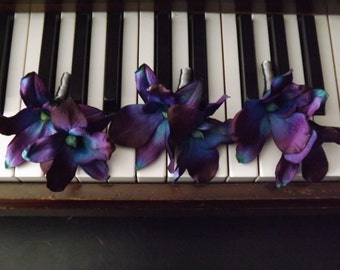 Double blue galaxy orchid boutonniere, choose your orchid