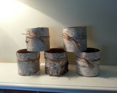 Birch Bark Vases, (5) bark centerpieces