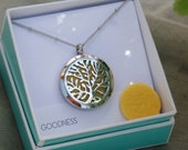 """Essential Oil Diffuser Locket for Diffusing and Aromatherapy, GOODNESS.  316L Stainless Necklace with 20"""" Chain and 2 Felt Pads Included"""
