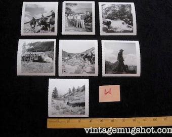 7 1950's King's Canyon National Park Original Photos Vintage Fishing Horseback Riding Camping Photographs Horses Fish Wilderness