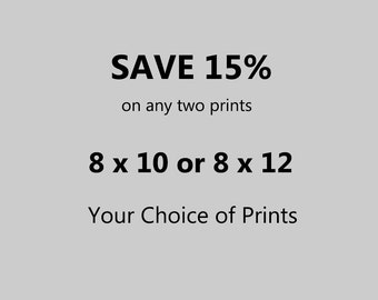 Any Two 8 x 10 or 8 x 12 Photographs – 15 Per Cent Discount – Your Choice of Prints