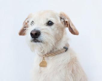 SALE: Vegan Rope Dog Collar, Traveller