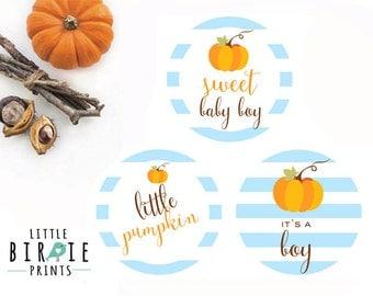 PUMPKIN BABY SHOWER Cupcake Toppers - Boy Pumpkin baby shower decorations - Pumpkin baby shower printables - Little Pumpkin Blue baby shower