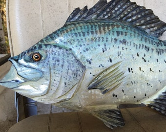 """Crappie 15"""" freshwater fishing indoor outdoor lake retreat decor chainsaw wooden fish carving wall mount rustic home original Todd Lynd art"""