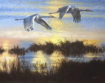 Sandhill Cranes 11 x 17 print (image 10.5 x 14.5) personally signed by artist RUSTY RUST / C-88-P