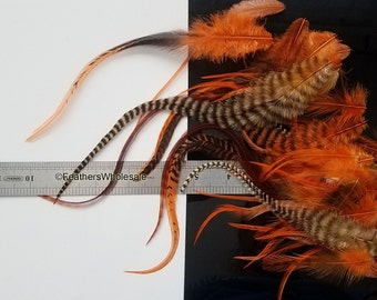 Bulk Orange Craft Feathers Etsy on Sale Discount Craft Supplies Lot 40