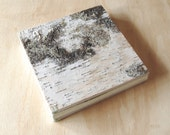 birch wood wedding guest book or journal - cabin guest book -green natural woodland rustic -wedding anniversary gift memorial ready to ship