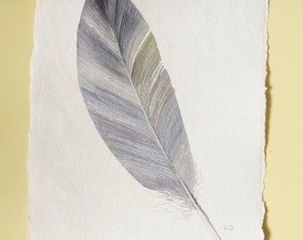 Original feather illustration watercolour painting in grey and neutral colours