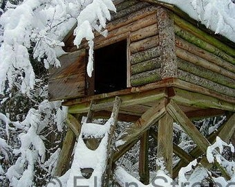 PHOTO Note Card, Alaskan Cache, Snow, Winter, Beautiful
