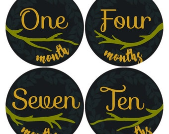 Month to month stickers, Woods Forest Themed Baby Boy Month to Month Stickers Photo Props