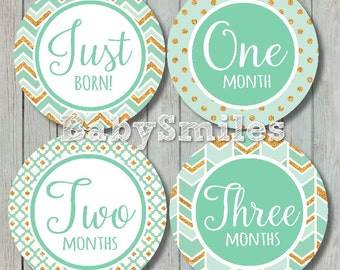 FREEGIFT Monthly Baby Stickers Baby Month Stickers Girl Month Stickers Monthly Stickers Monthly Milestone Stickers - Sweet Mint Gold Glitter