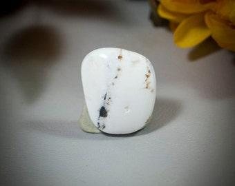 White BuffaloTurquoise Cabochon cab4136