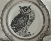 Gold or Silver Foodsafe Owl Dinnerware, Owl Plates, Owl Dishes, Bird Plate, Owl China, Rockabilly Plates, Owl China, Rockabilly Dishes
