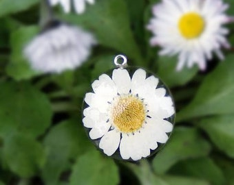 Daisy Flower Pendant - Real Flower Jewelry - White Jewelry - White Flower Pendant - Necklace Charm - Flower Jewelry - Daisy Pendant