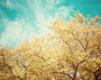 Turquoise Home Decor, Yellow Home Decor, Turquoise Wall Art, Yellow Wall Art, Tree Photograph, Nature Picture, Yellow Picture, Teal Photo.