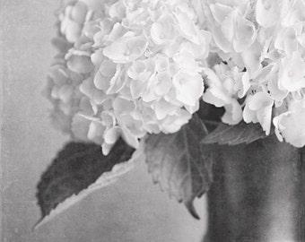 Black and White Print or Canvas Wrap, Hydrangea Print, Silver, Charcoal, Cream, Elegant Home Decor, Bathroom Decor, Bedroom Decor, Flower.