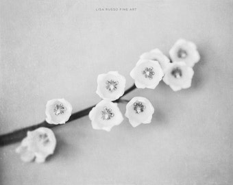 Clean Flower Print or Canvas Wrap, Black and White Wall Art, Flower Photography, Neutral Floral Decor, Lily of the Valley Print, Modern.