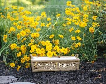 DIGITAL Prop Backdrop - Basket in Yellow Flowers - Instant Download Newborn Prop Backdrop Background - Digital Newborn Basket Prop