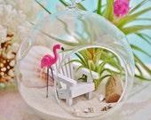 Beach Terrarium Kit ~ Adirondack Beach Chair ~ Pink Flamingo Terrarium ~ Small Glass Terrarium with Air Plant ~ Beach Decor ~ Gift
