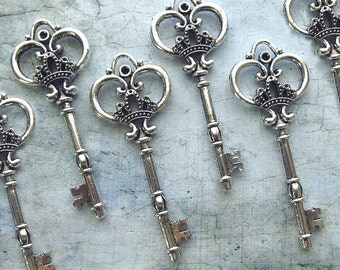 Arundel EXTRA LARGE Antique Silver Skeleton Key - Set of 10