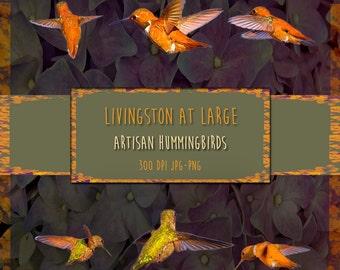 6 Artisan Hummingbirds 1 INSTANT Digital Download Scrapbook Printable-JPG/PNG