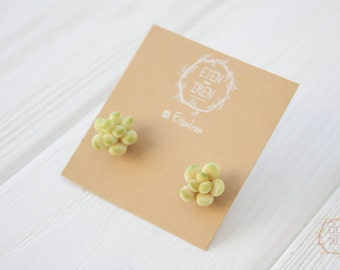 Green Succulent Stud Earrings Wholesale Small Hypoallergenic Studs Earstuds Succulent Plants Succulent Wedding Bridal Birthday Earrings Gift