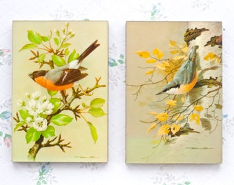 Bird Prints by Basil Ede - Wall Art Vintage Home Decor - Mullionaires Limited - Picture Frames