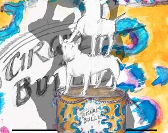Circus Bull Terrier Card