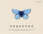 RESERVED for Beverly