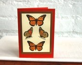 Monarch Butterfly Greeting Card Handmade Blank Natural History Note Card Stationery Gift Card