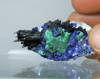 Collectible Display Mineral Quality Rich Blue Azurite Crystals with Malachite Display Specimen Milpillas Mexico DanPickedMinerals