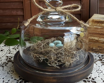 Vintage Glass Cloche Display Dome With Wooden Base, Shabby, Primitive, Rustic Home Decor
