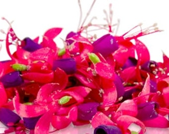 60 + Organic, LARGE FUCHSIA, Edible Flowers, Bulk, Rose Petals, Candied, Pansys, Wedding Cakes, Purples, Magenta, Large Orders Only
