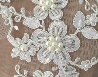 Lovely Beaded Alencon Lace Applique Pair, Floral Embroidery Alencon Applqlique