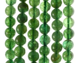 6mm Deep Green Apatite Gemstone Grade AA Round Loose Beads 7.5 inch Half Strand (80000925-155)