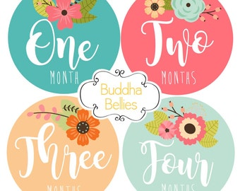 Baby Girl Monthly Stickers - Floral Month Stickers - Monthly Baby Stickers - Baby Decals - Baby Shower Gift - Baby Girl Stickers - Flowers