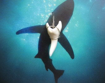 Shark Tooth Necklace Pendant, Modern day Mako Shark tooth, Stainless Steel wire wrap