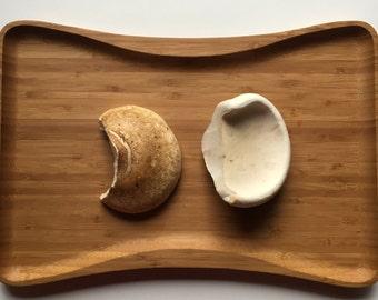 Dried mushroom tea, Birch polypores, immunity, foraged, medicinal, healing tea, survival, jewelry, fire starter, knife sharpener