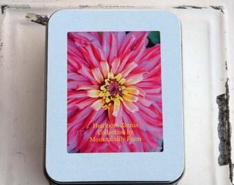 Zinnia Garden Kit Heirloom Zinnia Seeds