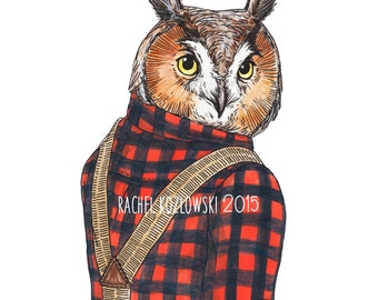 Mr. Owl - Long Eared Owl - Archival Print