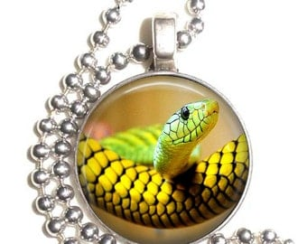 Yellow Snake Necklace, John Sullivan Photography Art Pendant, Earrings and/or Keychain, Round Photo Silver and Resin Charm Jewelry