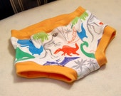 Dinosaur boy style briefs, briefs with fly, training pants size 1T 2T 4T 6 8 10, blue orange green red and grey dinos