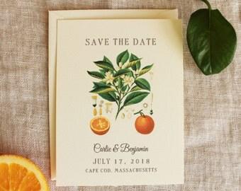 Orange Save The Date Wedding Suite