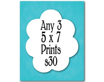 Wall Art Trio - Any three 5 x 7 Prints for 30.00 - Mix and Match - Choose your prints and choose your colors